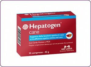 Hepatogen cane -300x221
