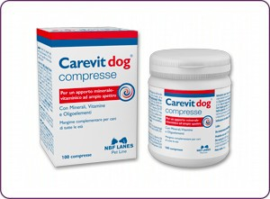 Carevit dog-300x221 kopia